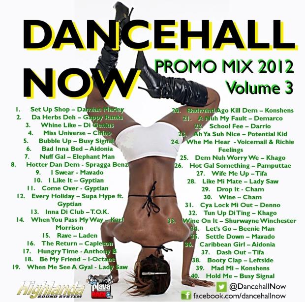 Dancehall Now 2012 Promo Mix Volume 3